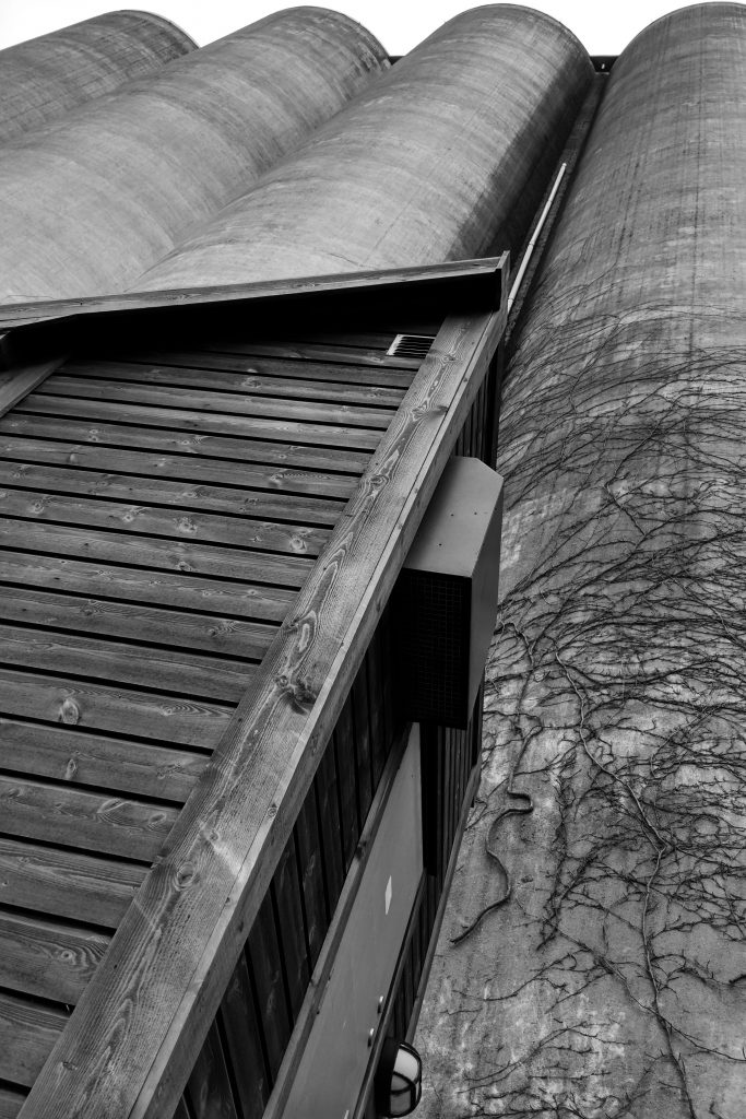 Perspective Sandnesfoto av Steev Vieira